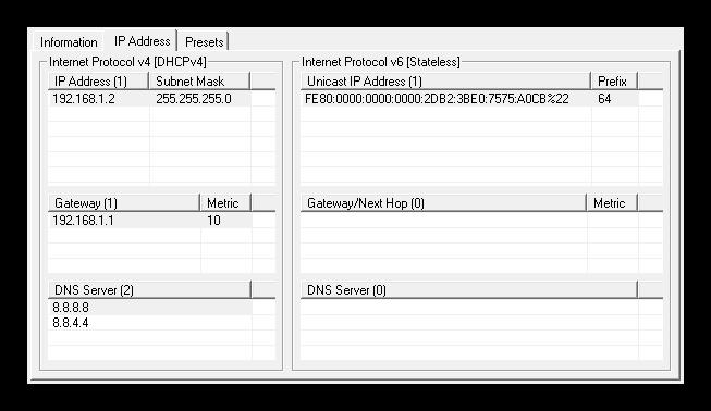Technitium MAC Address Changer - información IP